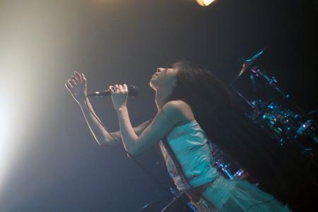 Rosemadder at 狂騒ゼンタングル
